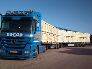 Mercedes Actros LZV combinatie